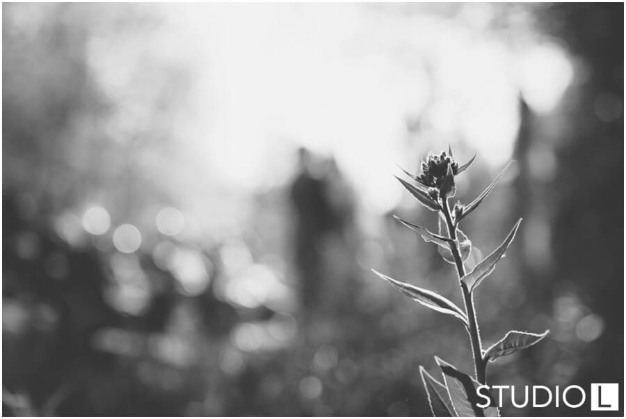 Sheboygan-WI-Backyard-Wedding-Studio-by-L-Photography-WEB_0033