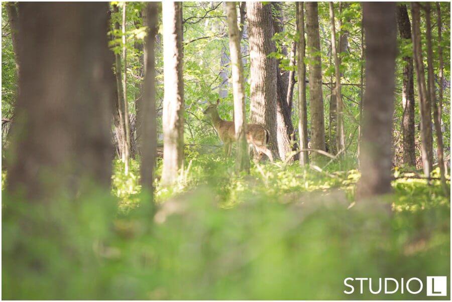 Sheboygan-WI-Backyard-Wedding-Studio-by-L-Photography-WEB_0047