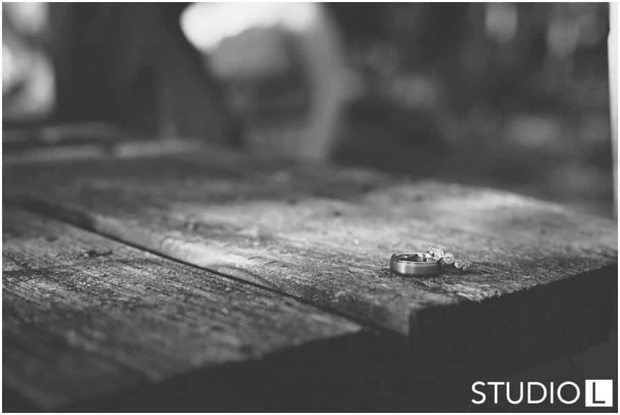 Sheboygan-WI-Backyard-Wedding-Studio-by-L-Photography-WEB_0054