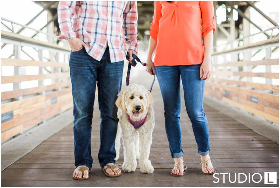 Milwaukee-WI-Engagement-Session-Studio-by-L-Photography_0010
