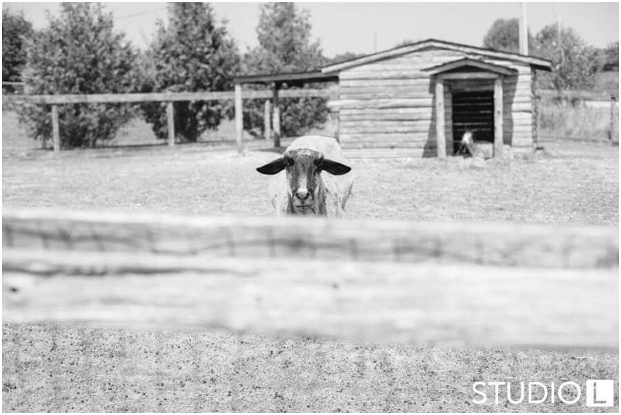 Door-County-Wisconsin-Lifestyle-Photography-Studio-L-Photography-WEB_0029