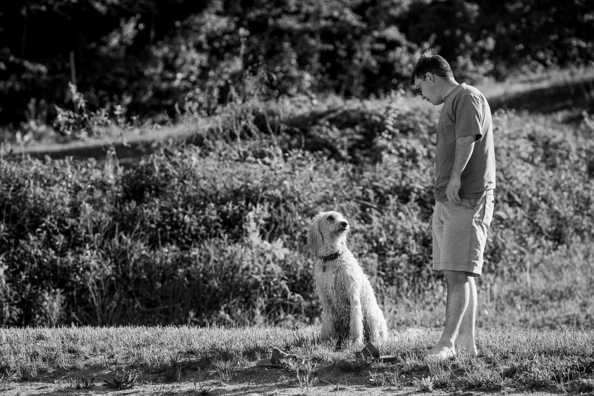 Goldendoodle-Macy-dog-fine-art-photography-by-Studio-L-photographer-Laura-Schneider-_8270