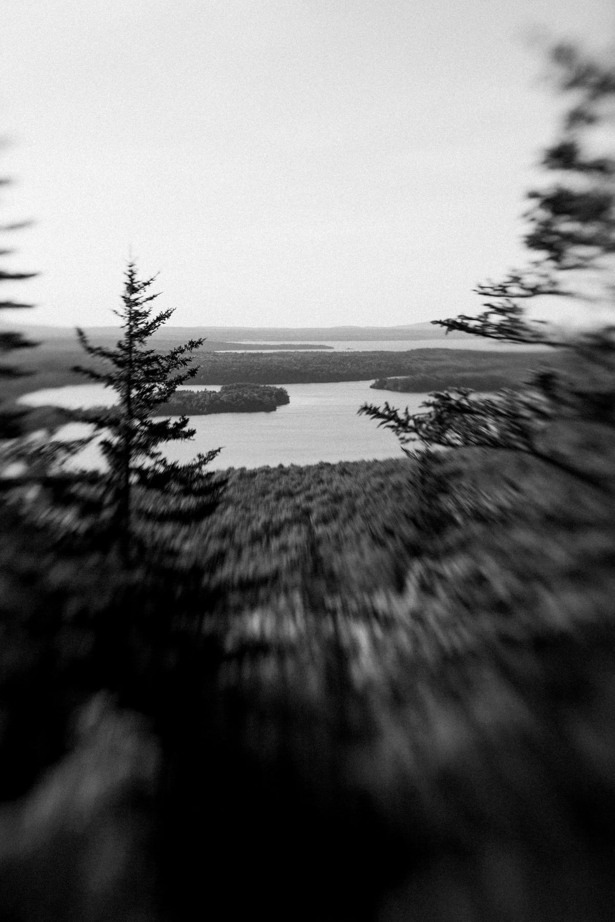 Acadia-National-Park-Maine-black-and-white-fine-art-photography-by-Studio-L-photographer-Laura-Schneider-_5503
