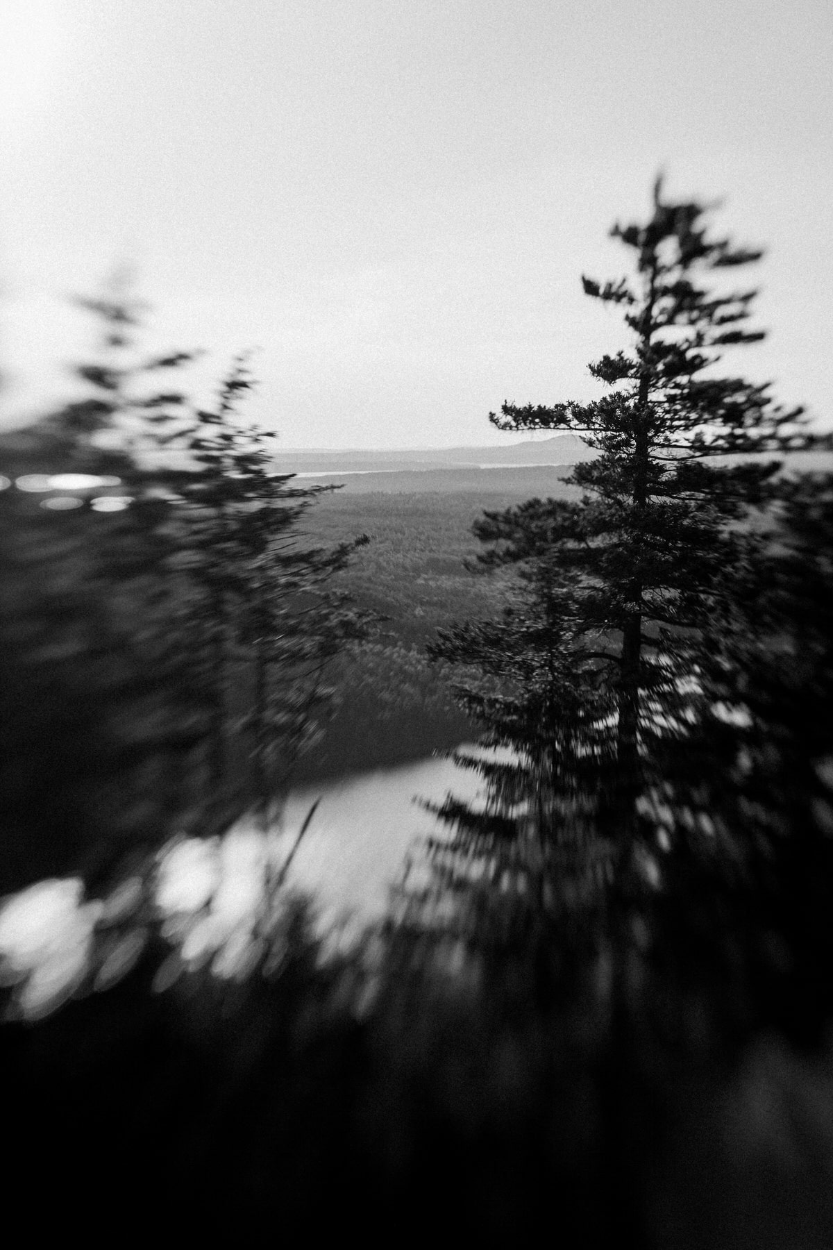 Acadia-National-Park-Maine-black-and-white-fine-art-photography-by-Studio-L-photographer-Laura-Schneider-_5510