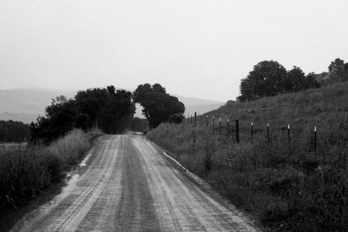 Pacific-Coast-Highway-Harmony-California-black-and-white-fine-art-photography-by-Studio-L-photographer-Laura-Schneider-_3112
