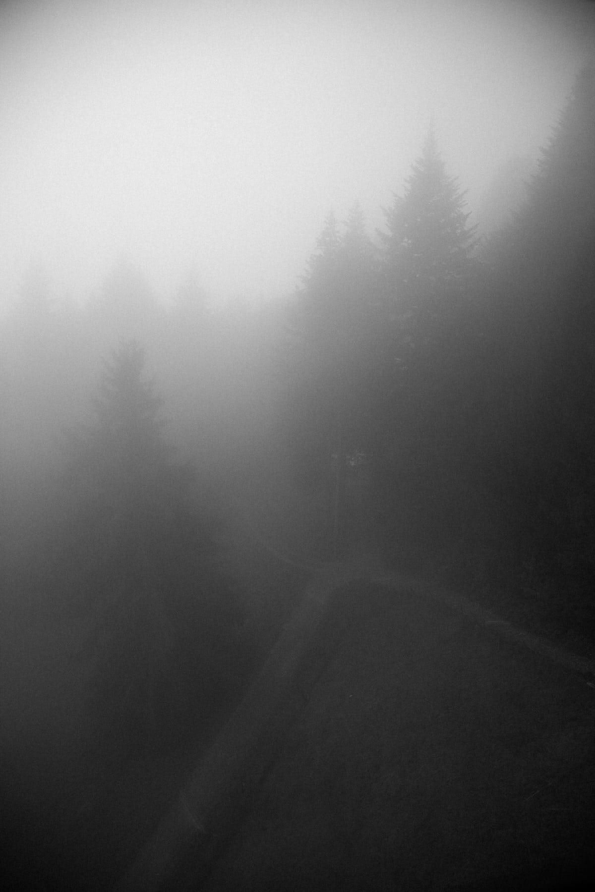 Mount_Pilatus_Lucerne_Switzerland-black-and-white-fine-art-photography-by-Studio-L-photographer-Laura-Schneider-_4418
