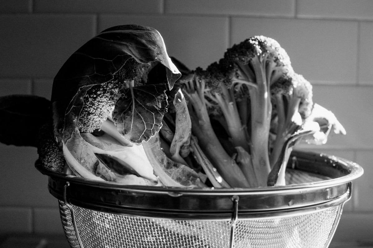 Organic-broccoli-from-Park-Ridge-Organics-Fond-du-Lac-Wisconsin-black-and-white-fine-art-photography-by-Studio-L-photographer-Laura-Schneider-_12126