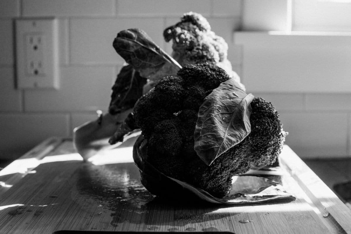 Organic-broccoli-from-Park-Ridge-Organics-Fond-du-Lac-Wisconsin-black-and-white-fine-art-photography-by-Studio-L-photographer-Laura-Schneider-_12143