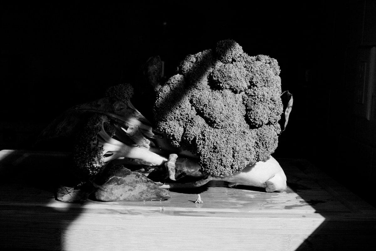 Organic-broccoli-from-Park-Ridge-Organics-Fond-du-Lac-Wisconsin-black-and-white-fine-art-photography-by-Studio-L-photographer-Laura-Schneider-_12150