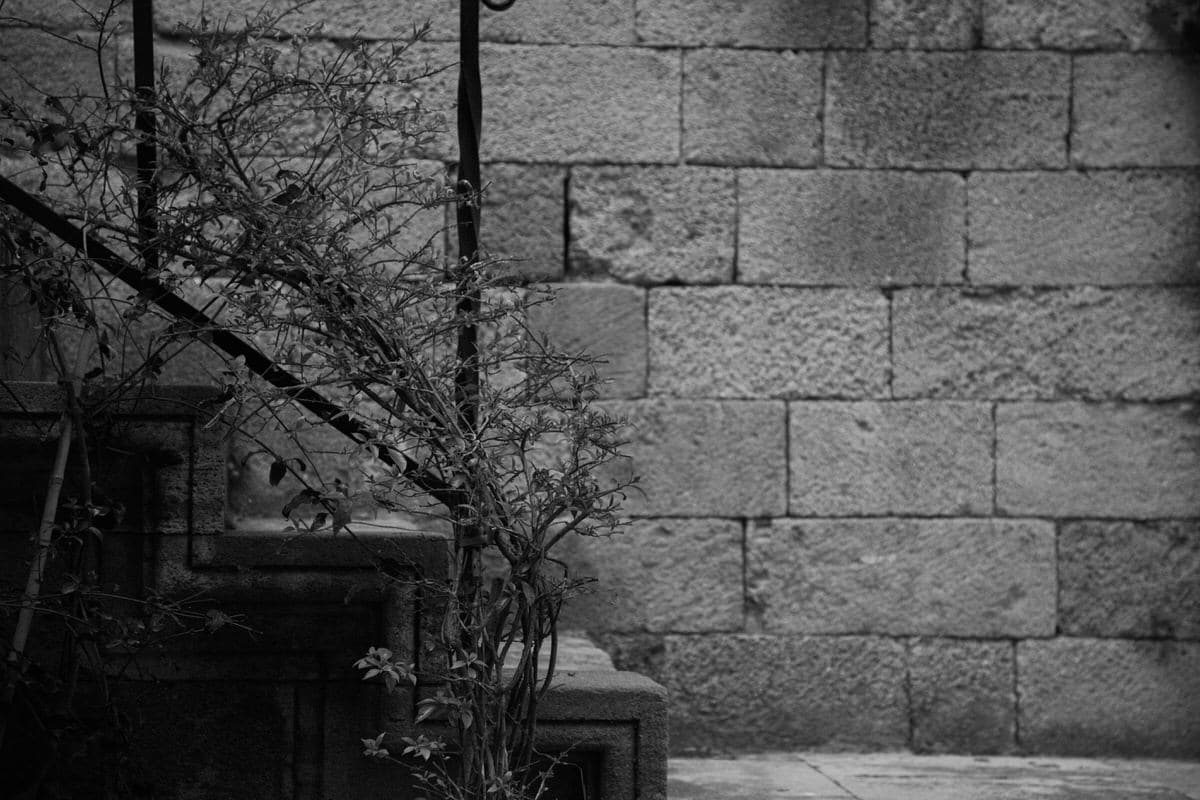 Rhodes-Greece-Island-black-and-white-fine-art-photography-by-Studio-L-photographer-Laura-Schneider-_2736