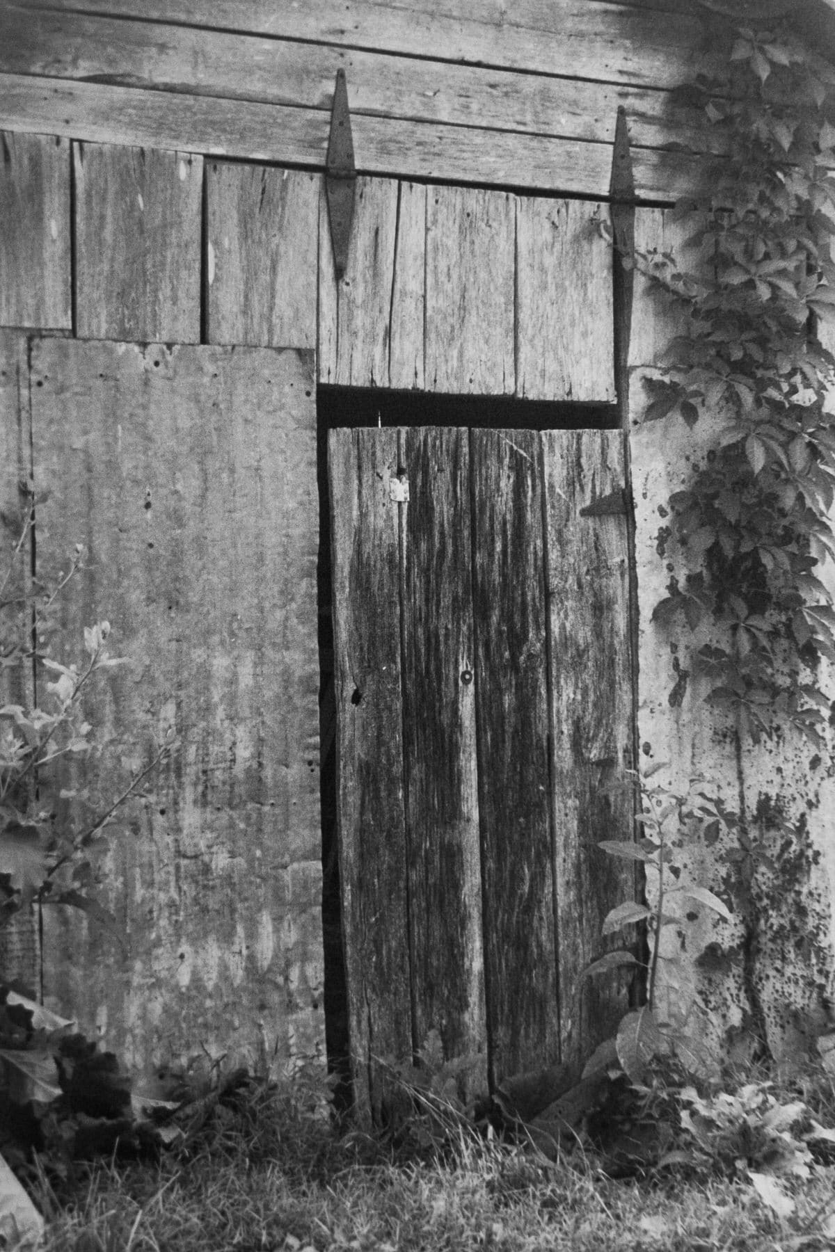 Tennessee-black-and-white-fine-art-film-photography-by-Studio-L-photographer-Laura-Schneider-_ 2439