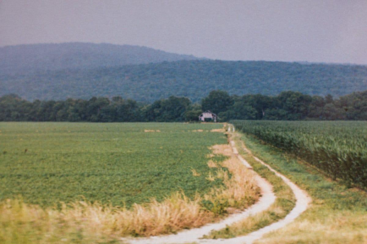 Tennessee-fine-art-film-photography-by-Studio-L-photographer-Laura-Schneider-_ 2449