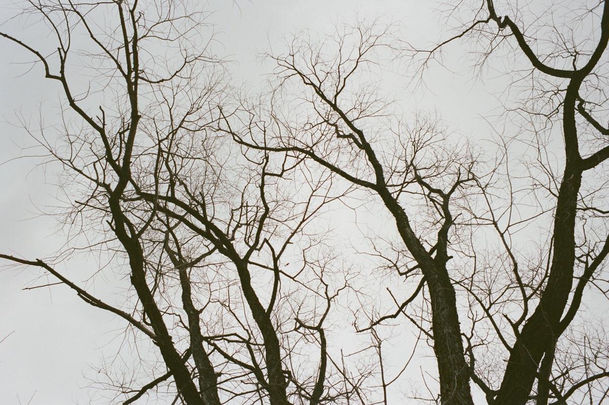 Kiekhaefer-Park-Fond-du-Lac-Wisconsin-fine-art-film-photography-by-Studio-L-photographer-Laura-Schneider-_0027