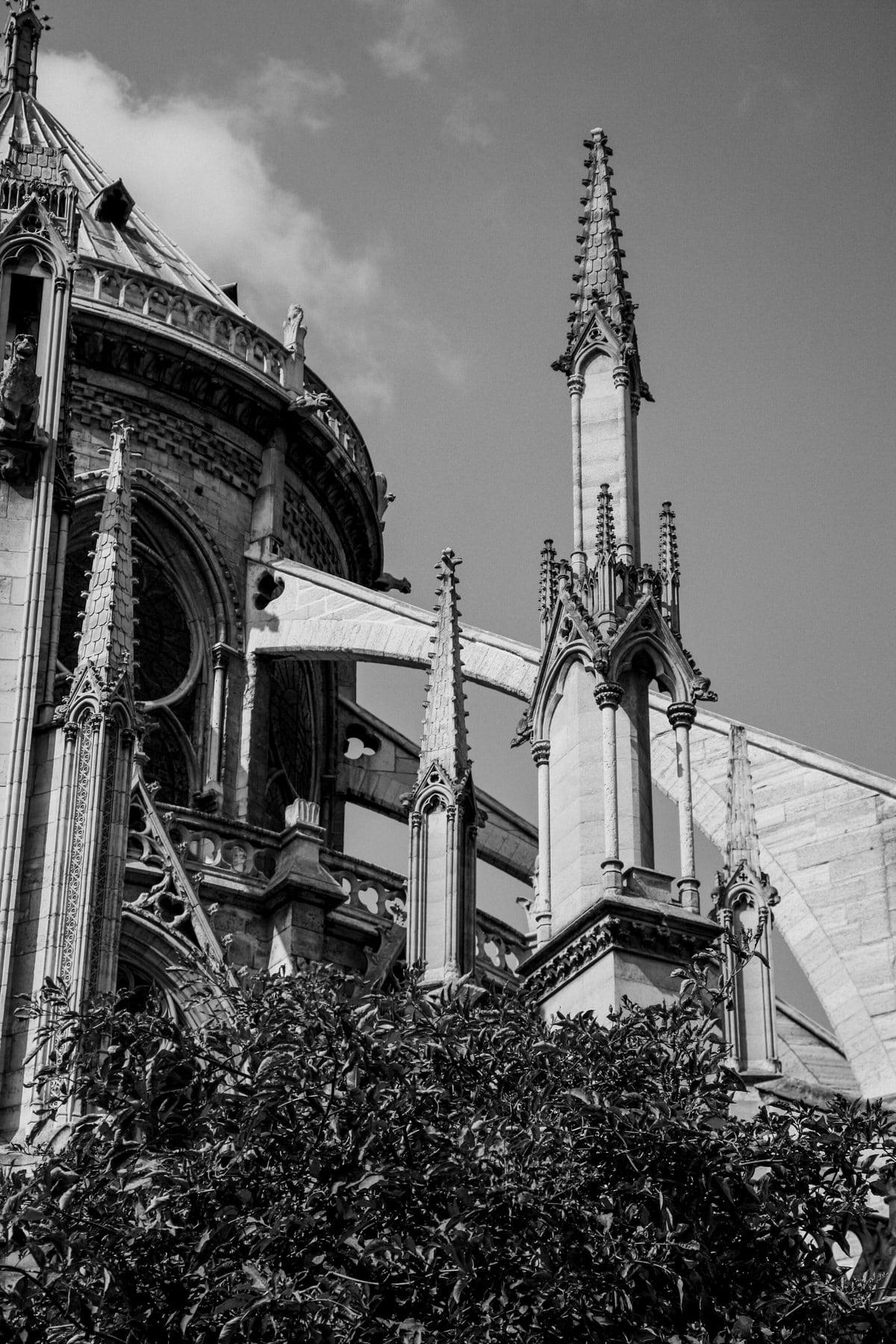 Notre-Dame-Paris-France-fine-art-photography-by-Studio-L-photographer-Laura-Schneider-_4999
