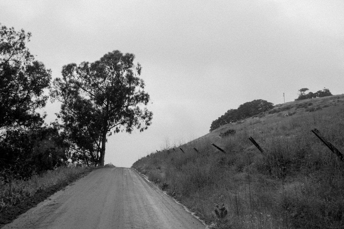 Pacific-Coast-Highway-Harmony-California-black-and-white-fine-art-photography-by-Studio-L-photographer-Laura-Schneider-_3110