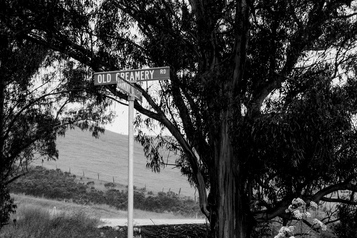 Pacific-Coast-Highway-Harmony-California-black-and-white-fine-art-photography-by-Studio-L-photographer-Laura-Schneider-_3144