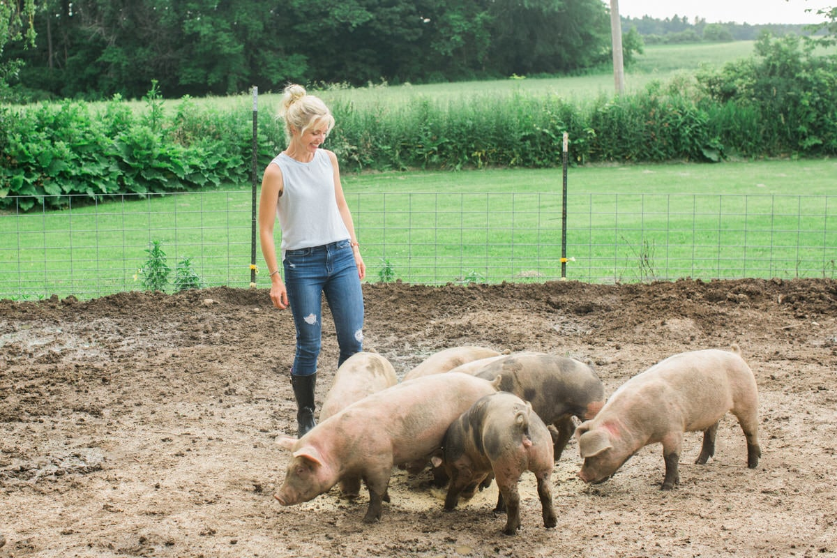 Humanely-raised-hogs-Wisconsin-farm-fine-art-photography-by-Studio-L-photographer-Laura-Schneider-_9292