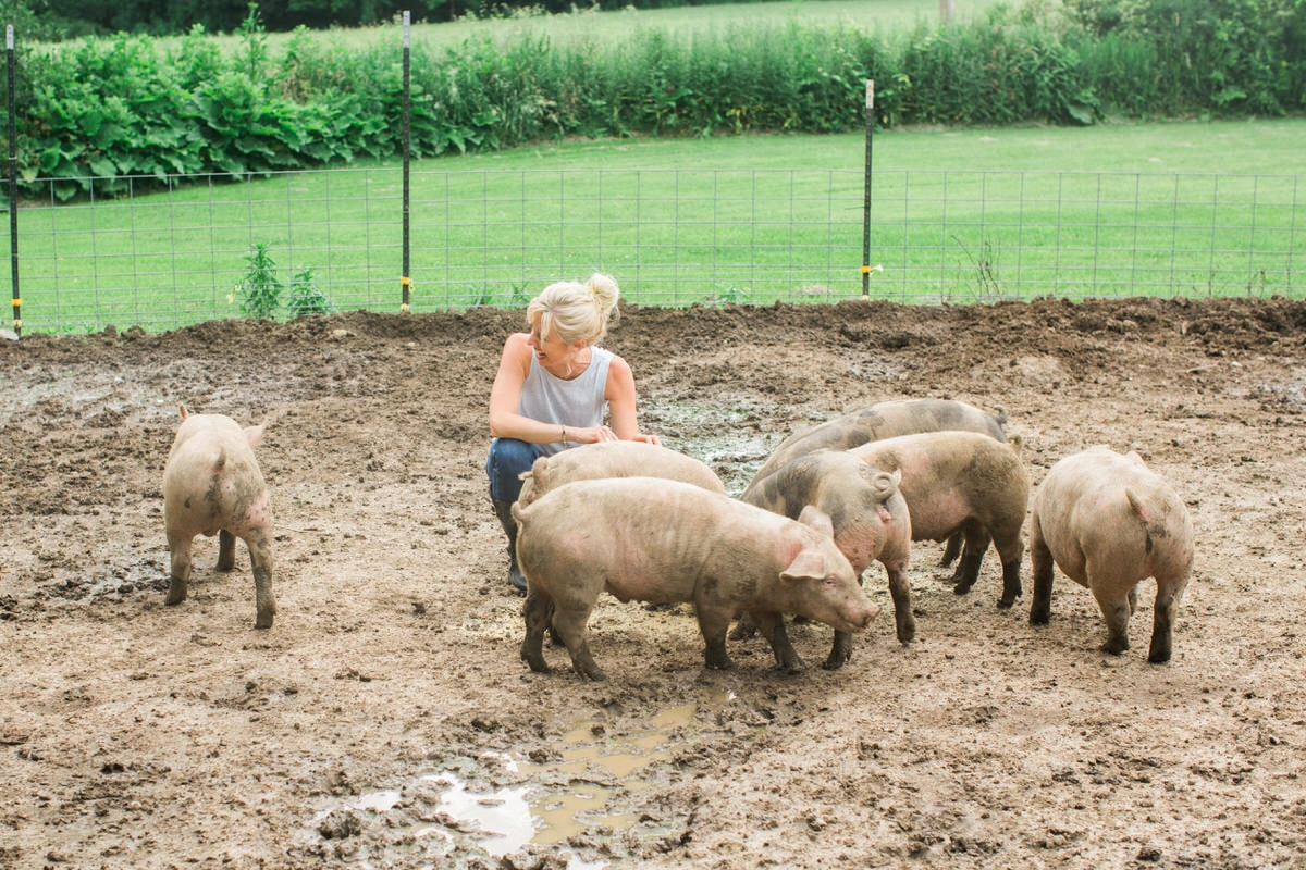 Humanely-raised-hogs-Wisconsin-farm-fine-art-photography-by-Studio-L-photographer-Laura-Schneider-_9299