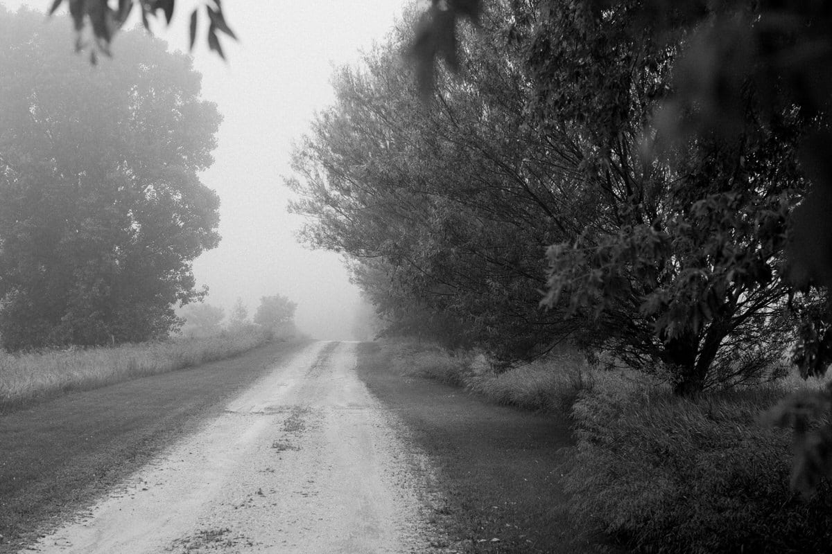 Wisconsin-fog-personal-project-black-and-white-fine-art-photography-by-Studio-L-photographer-Laura-Schneider-_9209