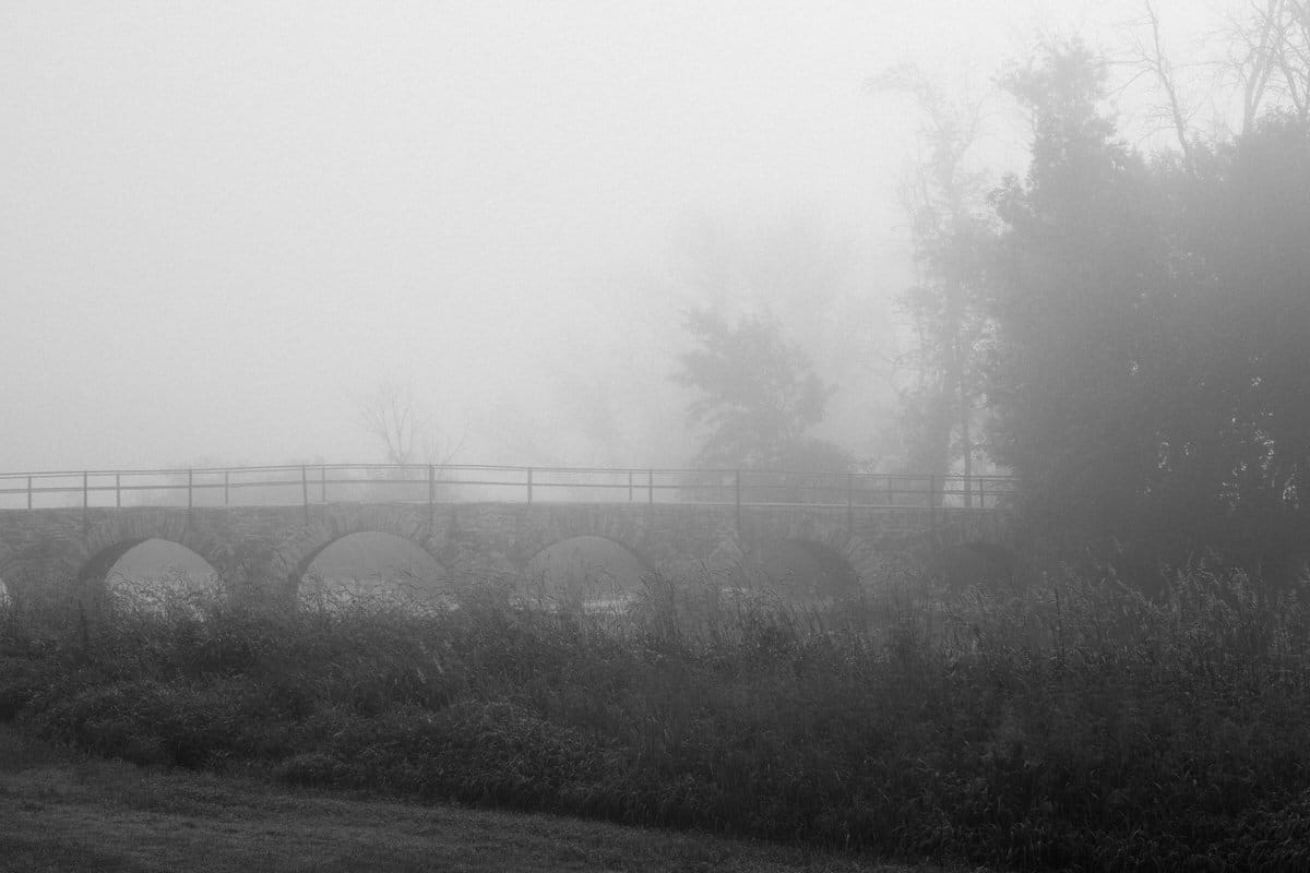 Wisconsin-fog-personal-project-black-and-white-fine-art-photography-by-Studio-L-photographer-Laura-Schneider-_9522