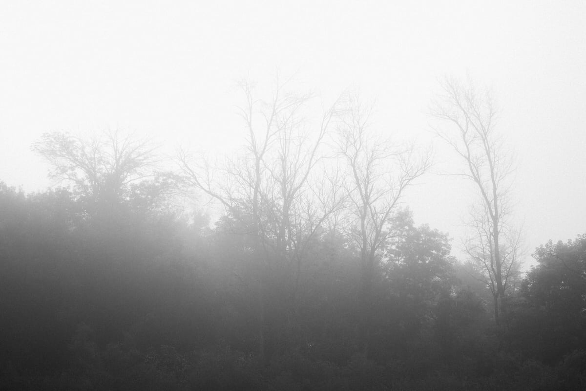 Wisconsin-fog-personal-project-black-and-white-fine-art-photography-by-Studio-L-photographer-Laura-Schneider-_9538