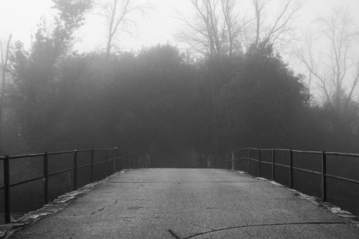Wisconsin-fog-personal-project-black-and-white-fine-art-photography-by-Studio-L-photographer-Laura-Schneider-_9546