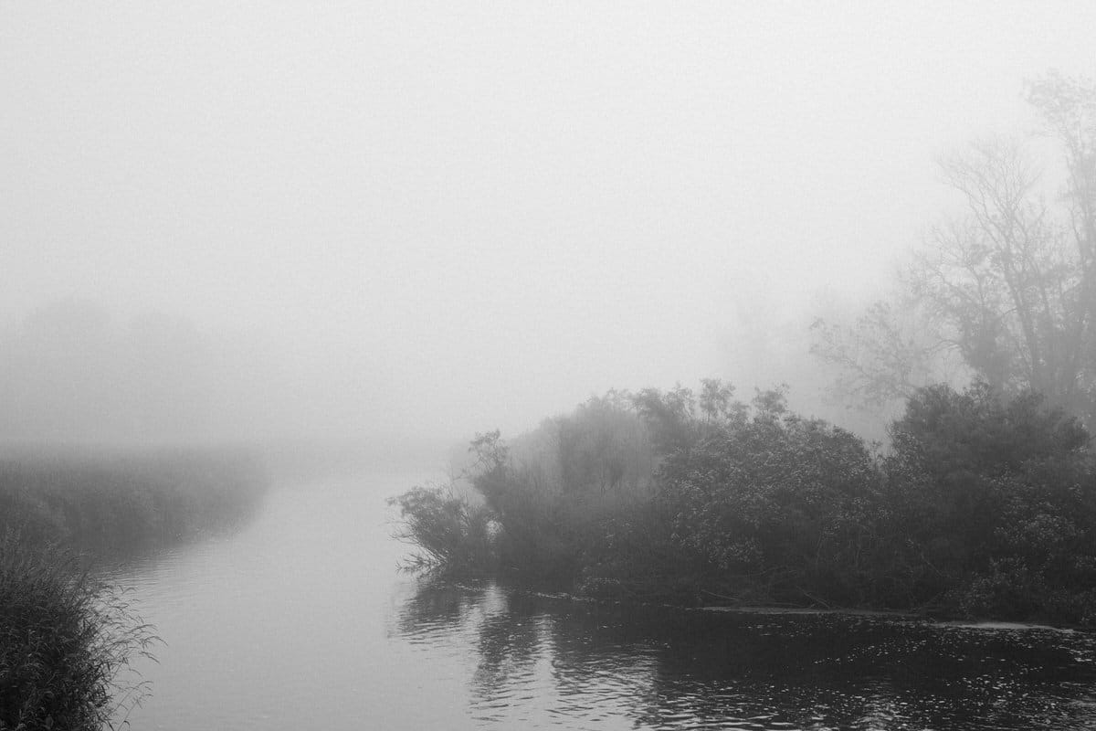 Wisconsin-fog-personal-project-black-and-white-fine-art-photography-by-Studio-L-photographer-Laura-Schneider-_9558