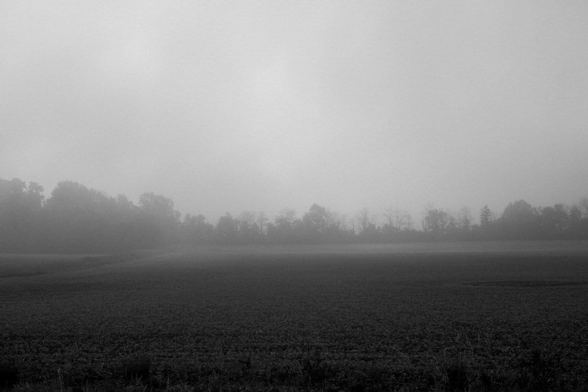 Wisconsin-fog-personal-project-black-and-white-fine-art-photography-by-Studio-L-photographer-Laura-Schneider-_9586