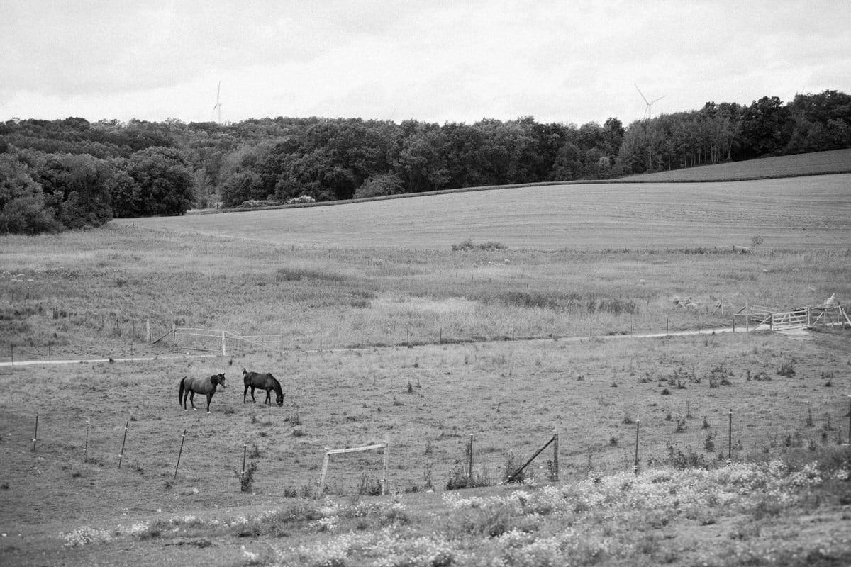 Cristo-Rey-Ranch-Wisconsin-black-and-white-fine-art-photography-by-Studio-L-photographer-Laura-Schneider-_1718