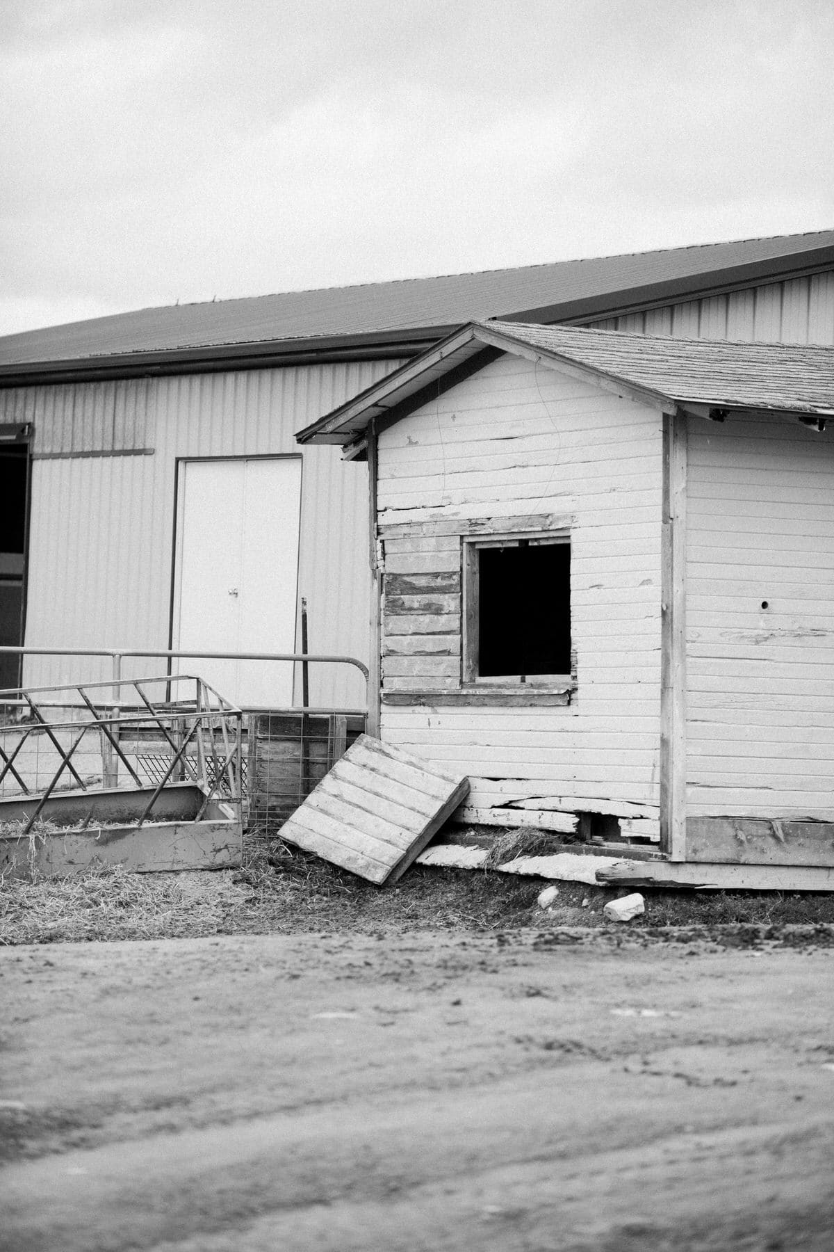 Cristo-Rey-Ranch-Wisconsin-black-and-white-fine-art-photography-by-Studio-L-photographer-Laura-Schneider-_1727
