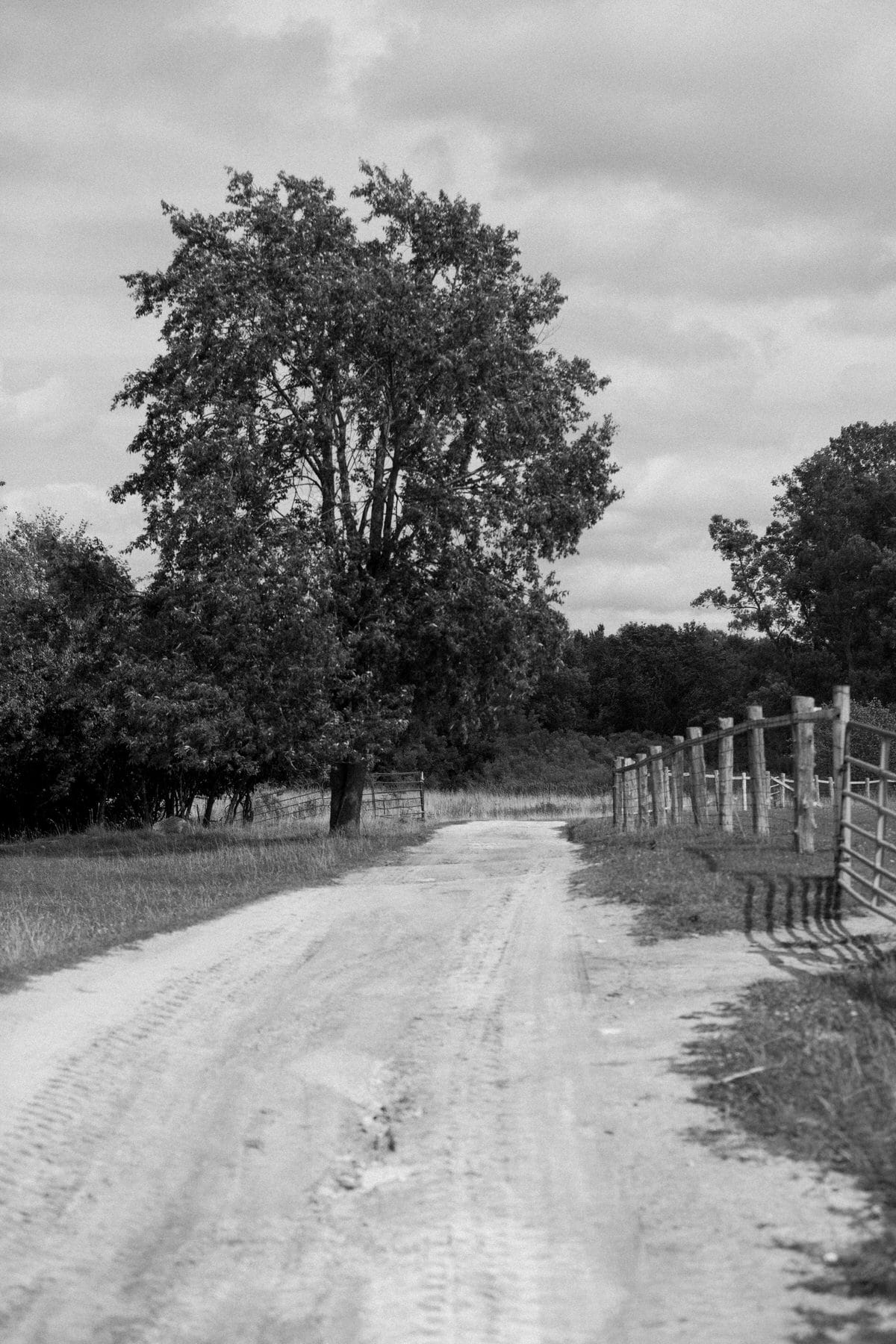 Cristo-Rey-Ranch-Wisconsin-black-and-white-fine-art-photography-by-Studio-L-photographer-Laura-Schneider-_1879