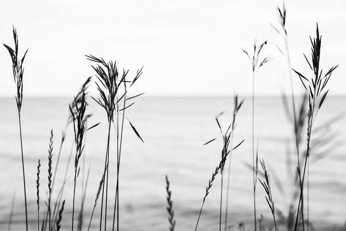 Lake-Michigan-Cottage-Wisconsin-black-and-white-fine-art-photography-by-Studio-L-photographer-Laura-Schneider-_9971