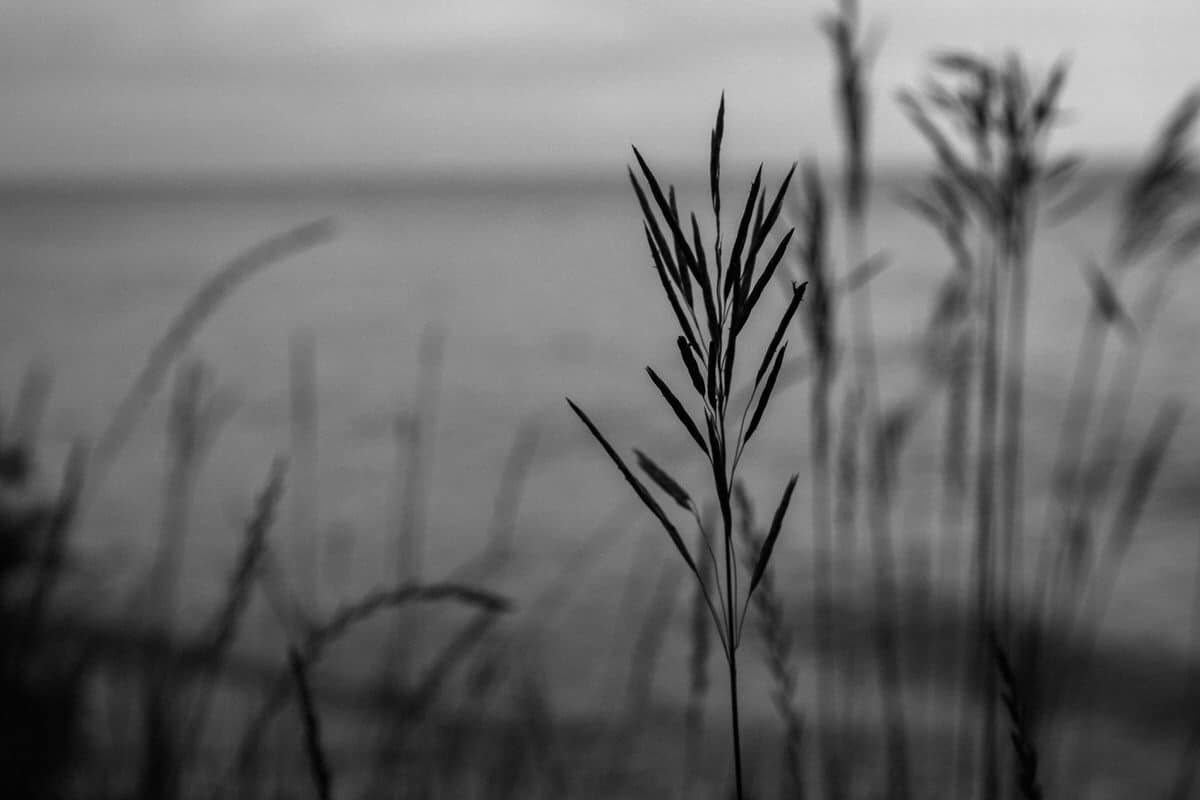 Lake-Michigan-Cottage-Wisconsin-black-and-white-fine-art-photography-by-Studio-L-photographer-Laura-Schneider-_9977
