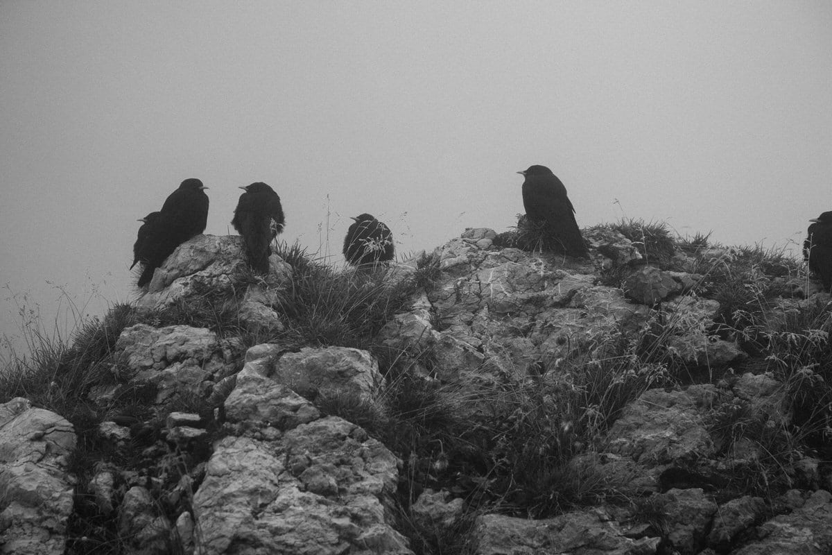 Mount_Pilatus_Lucerne_Switzerland-black-and-white-fine-art-photography-by-Studio-L-photographer-Laura-Schneider-_4404