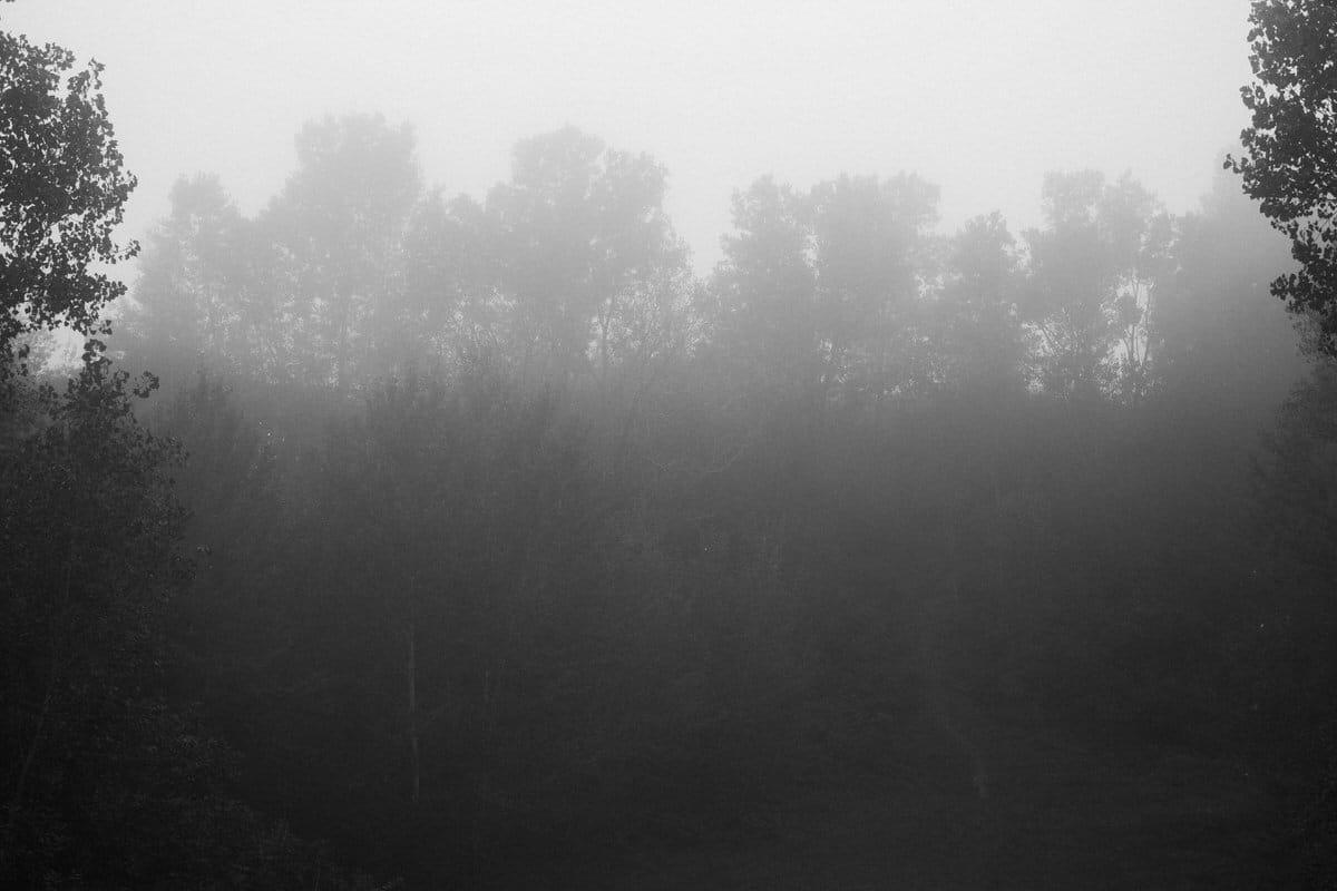 Kiekhaefer-Park-Fond-du-Lac-Wisconsin-black-and-white-fine-art-photography-by-Studio-L-photographer-Laura-Schneider-_3367