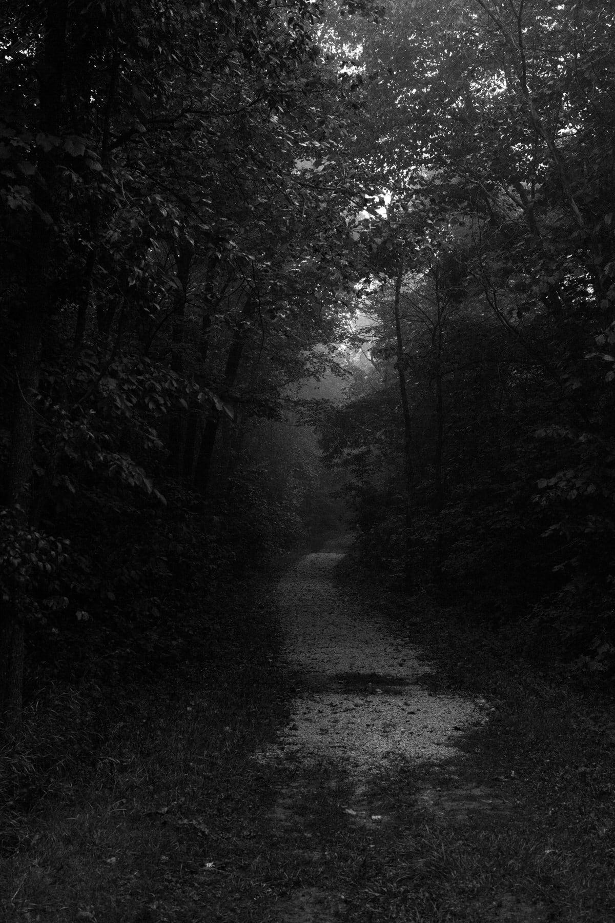 Kiekhaefer-Park-Fond-du-Lac-Wisconsin-black-and-white-fine-art-photography-by-Studio-L-photographer-Laura-Schneider-_3378