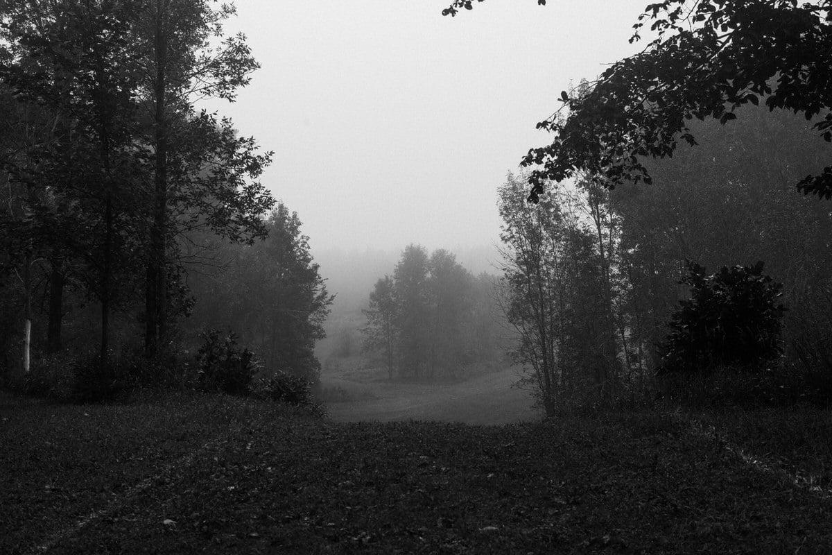 Kiekhaefer-Park-Fond-du-Lac-Wisconsin-black-and-white-fine-art-photography-by-Studio-L-photographer-Laura-Schneider-_3382