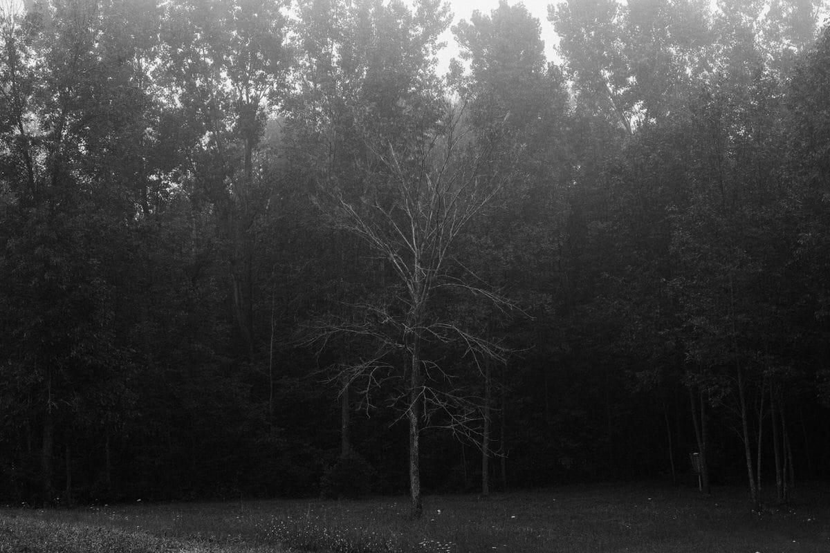 Kiekhaefer-Park-Fond-du-Lac-Wisconsin-black-and-white-fine-art-photography-by-Studio-L-photographer-Laura-Schneider-_3386