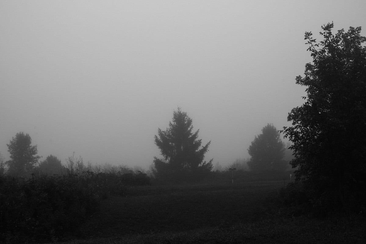 Kiekhaefer-Park-Fond-du-Lac-Wisconsin-black-and-white-fine-art-photography-by-Studio-L-photographer-Laura-Schneider-_3392