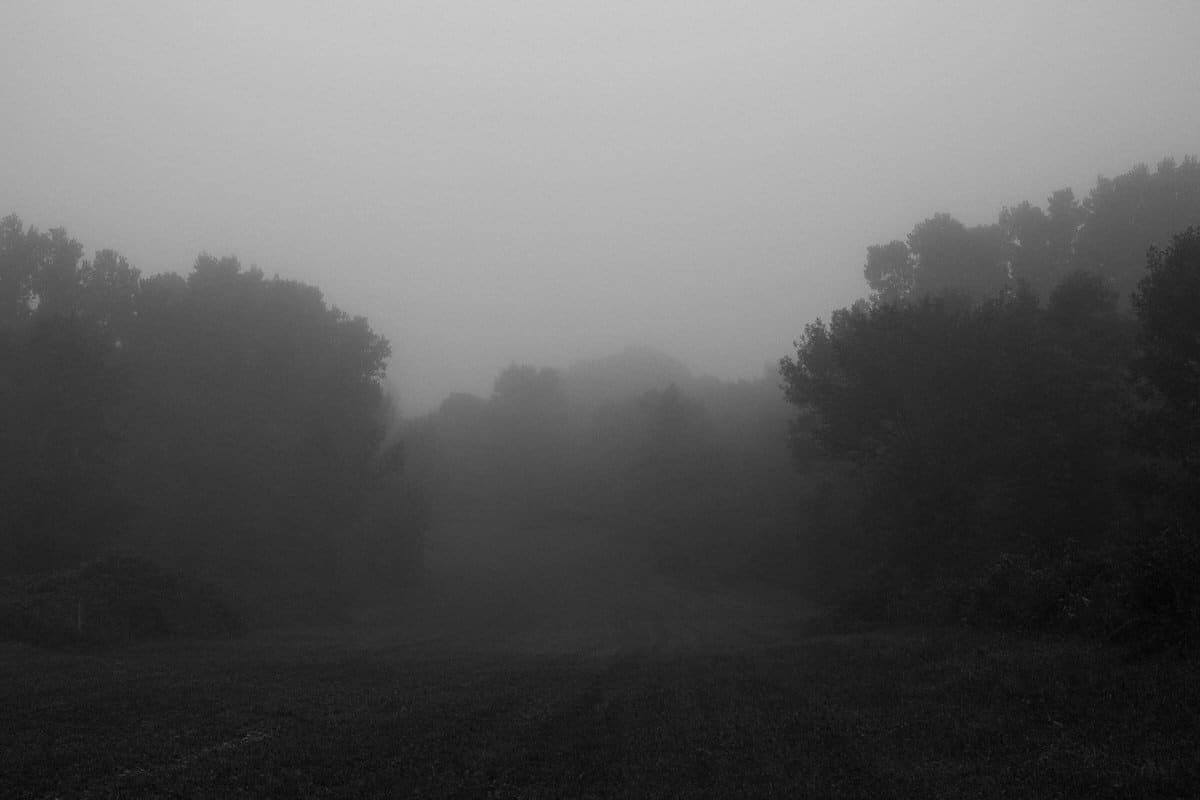 Kiekhaefer-Park-Fond-du-Lac-Wisconsin-black-and-white-fine-art-photography-by-Studio-L-photographer-Laura-Schneider-_3393
