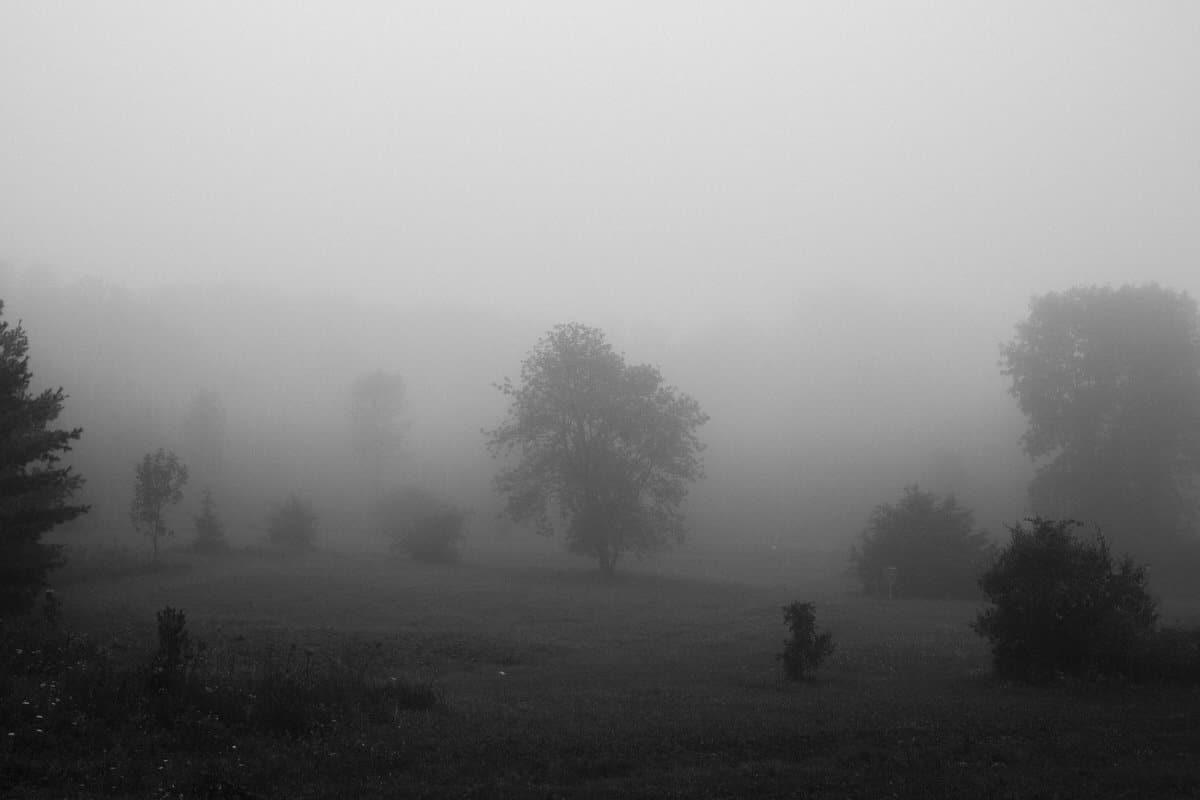Kiekhaefer-Park-Fond-du-Lac-Wisconsin-black-and-white-fine-art-photography-by-Studio-L-photographer-Laura-Schneider-_3418