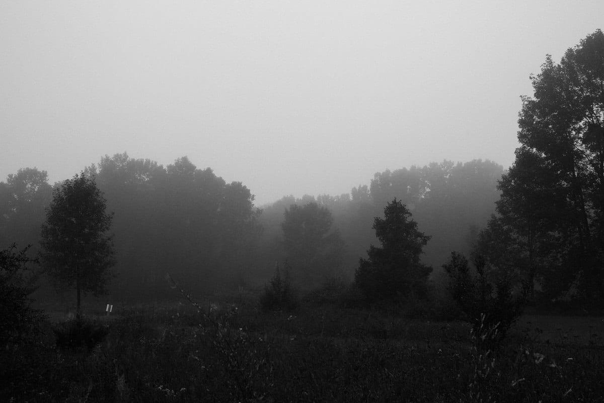 Kiekhaefer-Park-Fond-du-Lac-Wisconsin-black-and-white-fine-art-photography-by-Studio-L-photographer-Laura-Schneider-_3461