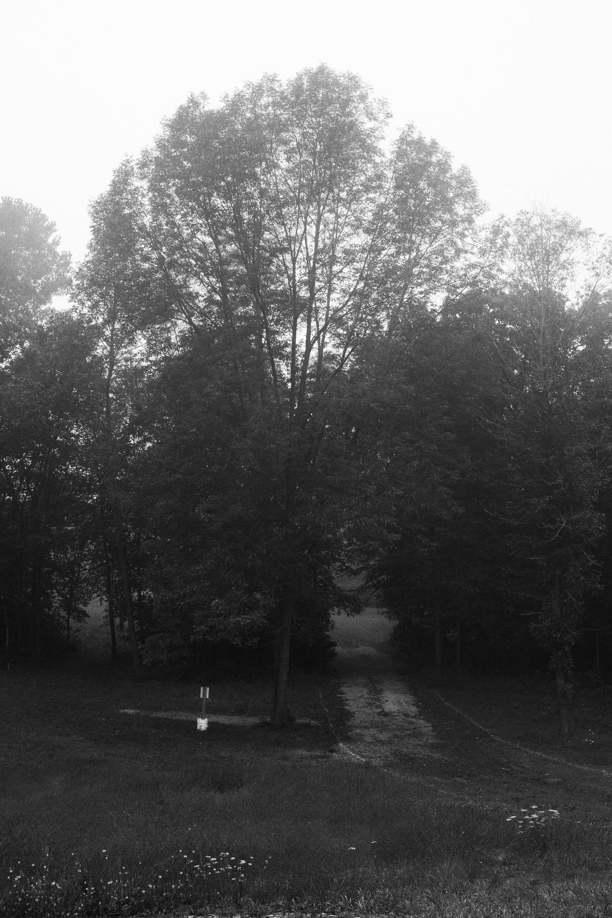 Kiekhaefer-Park-Fond-du-Lac-Wisconsin-black-and-white-fine-art-photography-by-Studio-L-photographer-Laura-Schneider-_3482