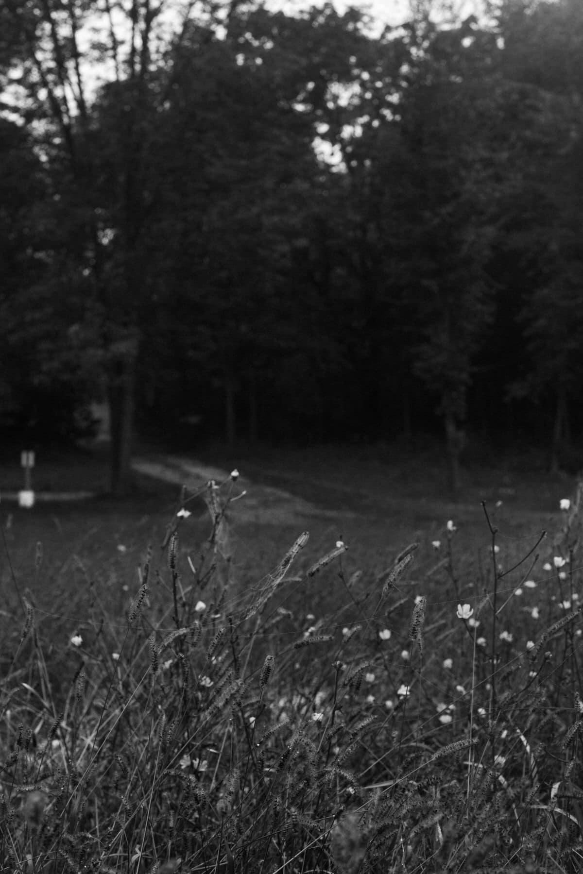 Kiekhaefer-Park-Fond-du-Lac-Wisconsin-black-and-white-fine-art-photography-by-Studio-L-photographer-Laura-Schneider-_3484