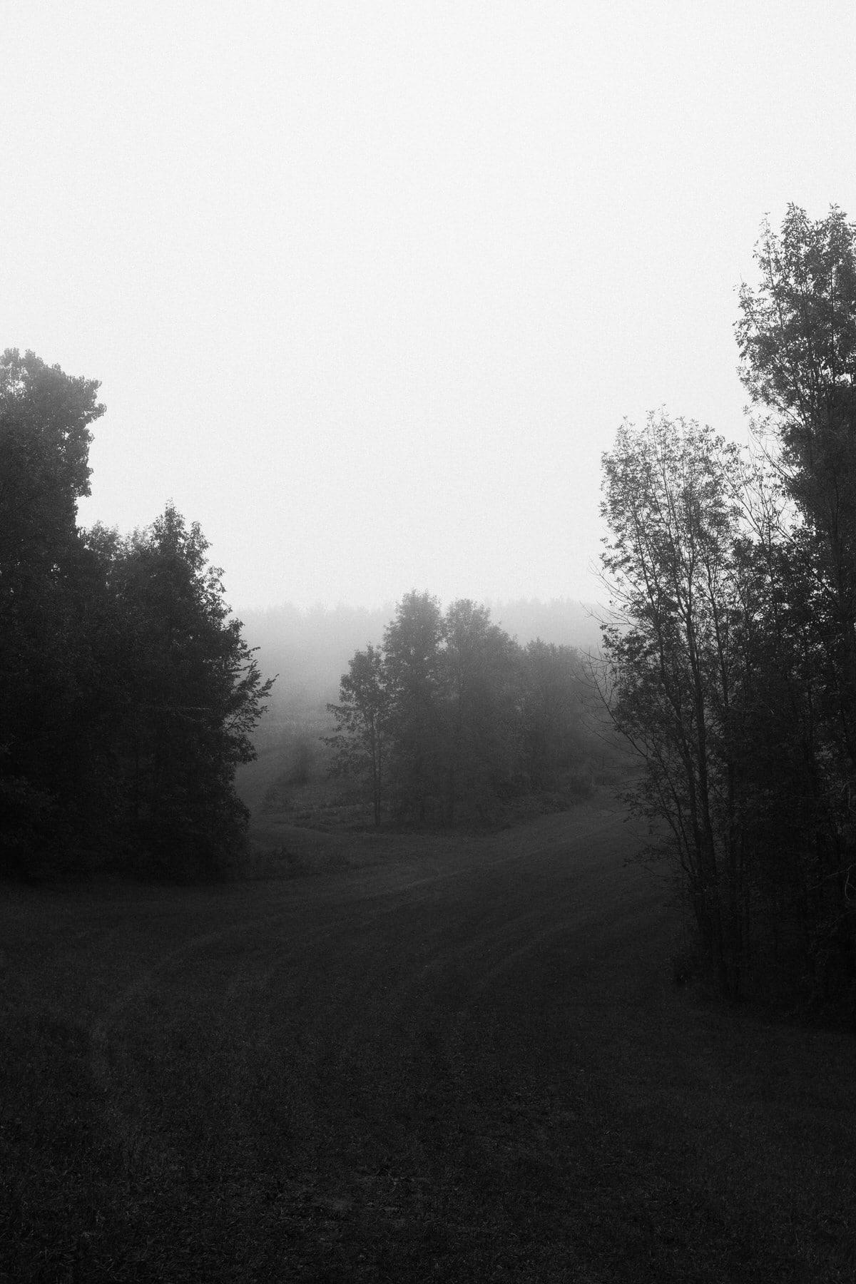 Kiekhaefer-Park-Fond-du-Lac-Wisconsin-black-and-white-fine-art-photography-by-Studio-L-photographer-Laura-Schneider-_3487