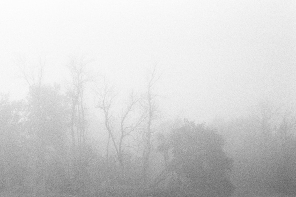 Into-the-fog-black-and-white-fine-art-film-photography-by-Studio-L-photographer-Laura-Schneider-_004