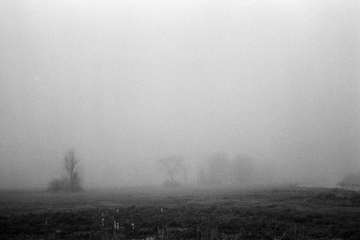 Midwest-Fog-black-and-white-fine-art-film-photography-by-Studio-L-photographer-Laura-Schneider-_004