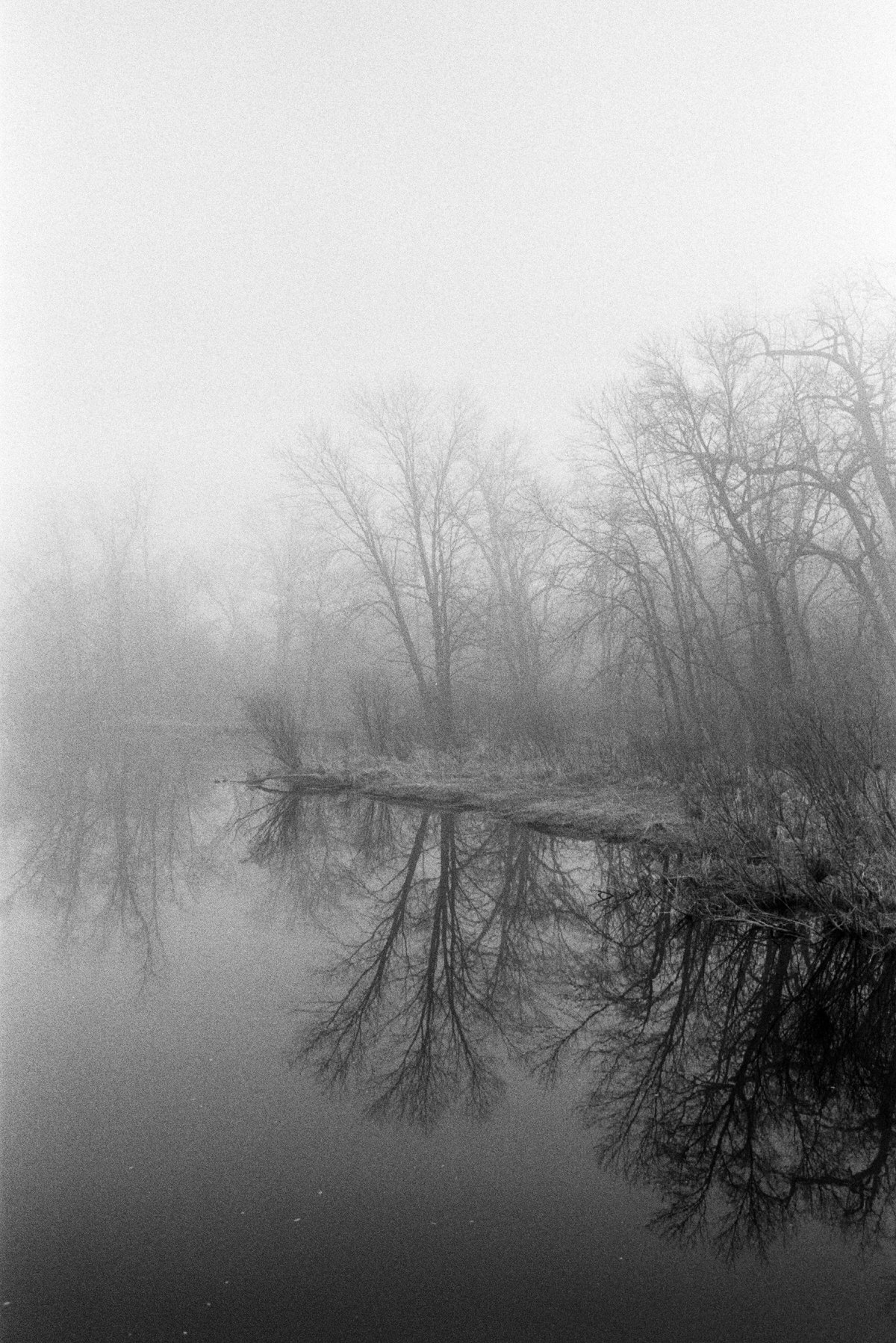 Midwest-Fog-black-and-white-fine-art-film-photography-by-Studio-L-photographer-Laura-Schneider-_010