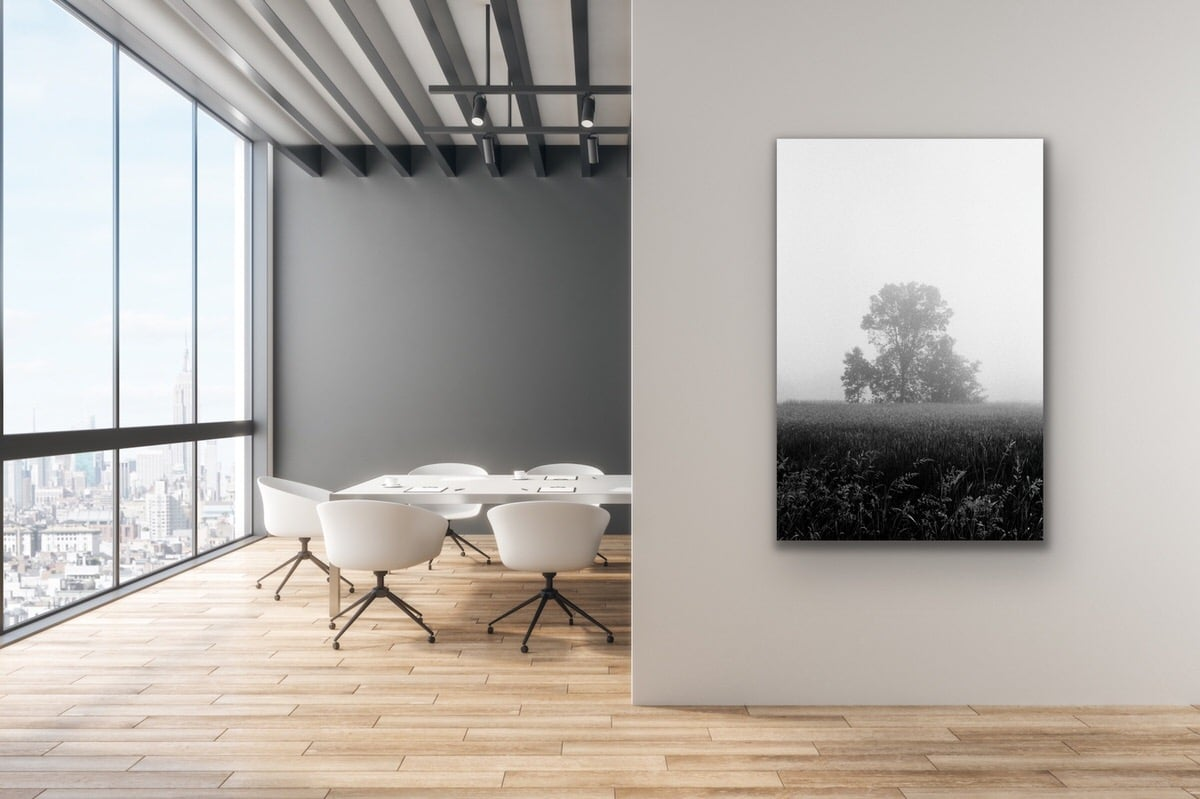 Black-and-white-fine-art-film-photography-wall-decor-by-emerging-artist-Studio-L-photographer-Laura-Schneider-_4713