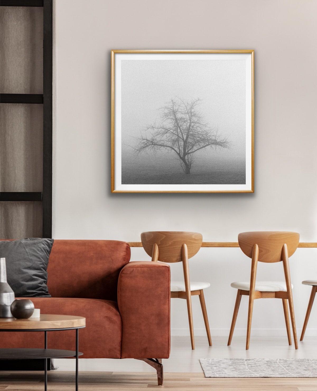 Black-and-white-fine-art-film-photography-wall-decor-by-emerging-artist-Studio-L-photographer-Laura-Schneider-_4900
